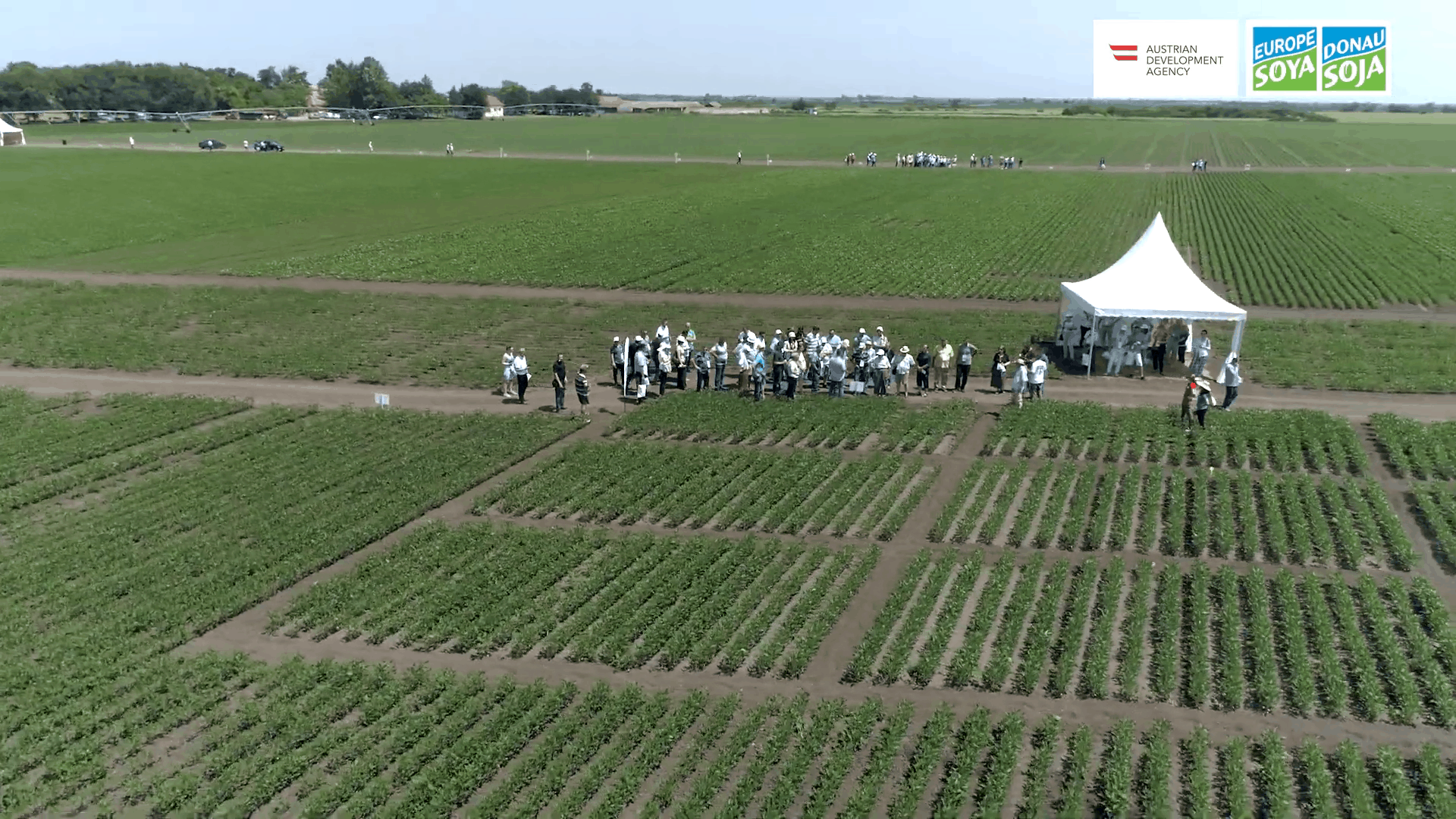 Dan polja Dunav Soja, Lugovo 2019