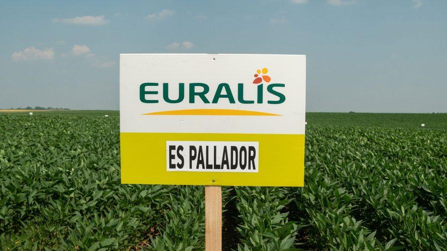Euralis-01